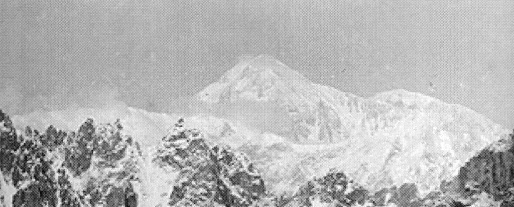 McKinley from Fake Peak